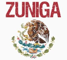 Zuniga Surname Mexican by surnames