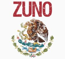 Zuno Surname Mexican by surnames