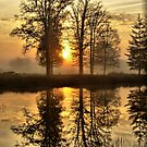 Morning Sun Reflections by ienemien