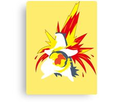 【20600+ views】Pokemon  Cyndaquil>Quilava>Typhlosion Canvas Print