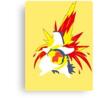 【20600+ views】Pokemon  Cyndaquil>Quilava>Typhlosion Canvas Print