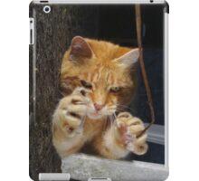 Halloween cat iPad Case/Skin