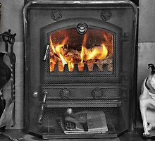 The warmth of a real fire by missmoneypenny