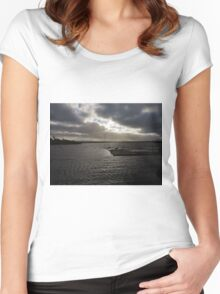Ducks and Swans Women's Fitted Scoop T-Shirt