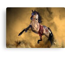 Dreamweaver'... Canvas Print