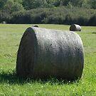The Hay Bale by Martha Medford