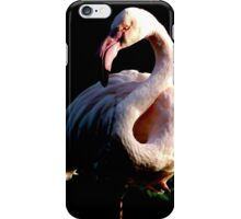 The Greater Flamingo iPhone Case/Skin