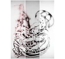 Parker's Mood Photographic Print