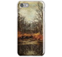 Mysterious Bashakill iPhone Case/Skin
