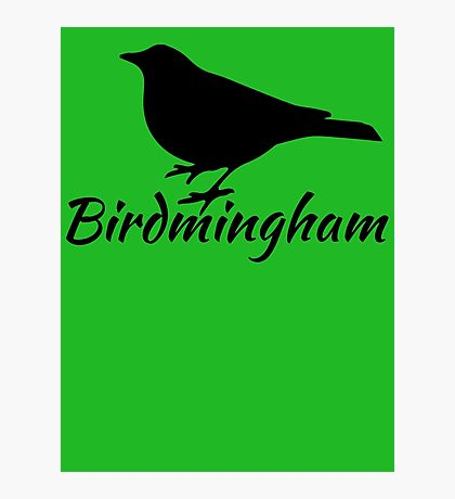 Birdmingham Photographic Print