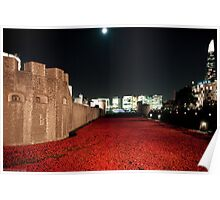 Poppies at theTower of London - At Night with the Shard. Poster