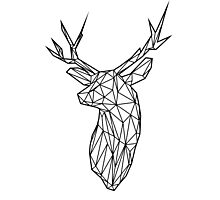 Black Wire Faceted Stag Trophy Head Photographic Print