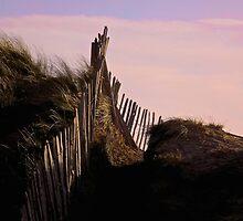 Eroding Fenceline Westward Ho! by Kevin Wortley