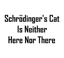 Schrodinger's Cat Is Neither Here Nor There Photographic Print