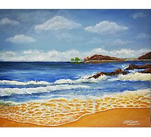The Seascape by N K Sran Photographic Print