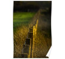 Golden Fence Poster