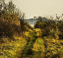 Footpath by Jack Steel