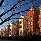 Washington, DC, Capitol Street by cclaude