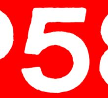 P58 - LOGO IN RED RECTANGLE Sticker