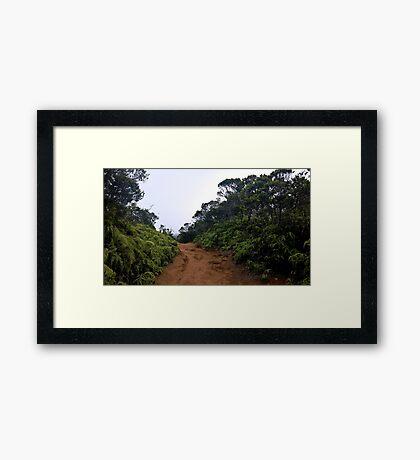 The Way Forward Framed Print