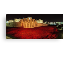 Poppies at theTower of London -  Night Panorama Canvas Print