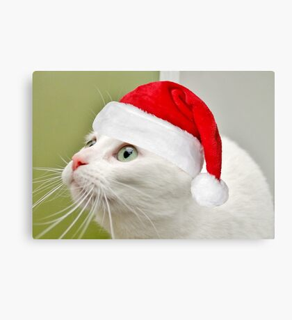 Sophies Home For Christmas Canvas Print