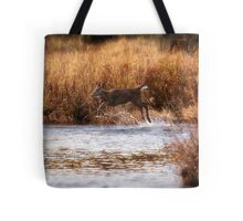 White Tail Deer jumping into the Creek - Parc National Mont Tremblant Tote Bag