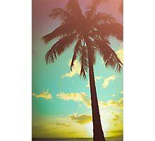 Retro Styled Palm Tree Photographic Print