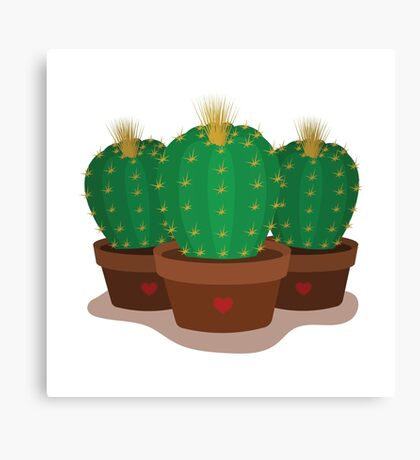 Three cacti in pots Canvas Print