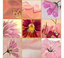 Photo Collage # 2 By Sandra Foster  Photographic Print
