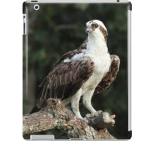 Osprey with dinner iPad Case/Skin