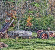 Autumn On The Farm by Richard Bean
