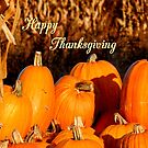 Thanksgiving #2 by WildThingPhotos