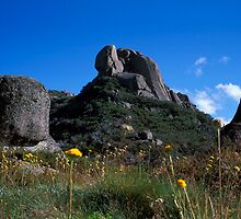 Summer - Mt Buffalo - Victoria by James Pierce