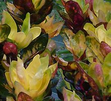 Foliage 1 by Helen French