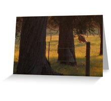 Sunset at Three Springs Greeting Card