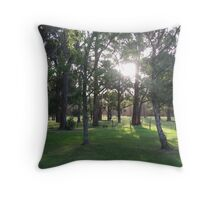 Three Springs Sunset Throw Pillow