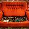 Fancy Photos of Furniture  -bugboobunz-