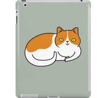 Special Cat... Ginger and White iPad Case/Skin