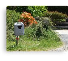 Water Mail Canvas Print