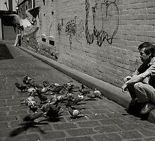 Chinatown Pigeons by Tim Heraud