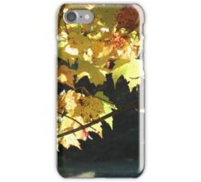 Muskoka Fall iPhone Case/Skin