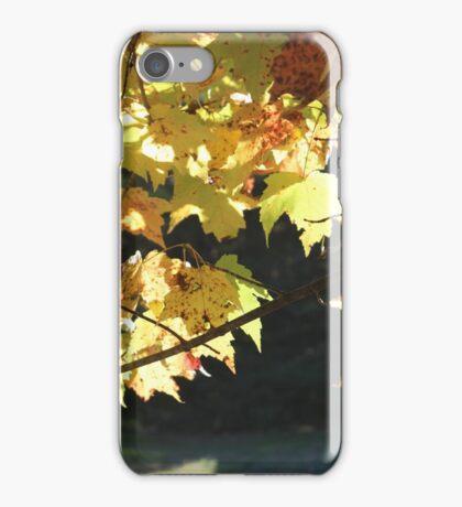 Muskoka Fall iPhone Case/Skin