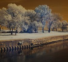 Lincoln Park, Chicago by Jason Ross