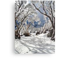 Snowgums Metal Print