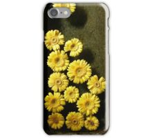 Yellow Flowers in Sandstone Trough 	 iPhone Case/Skin