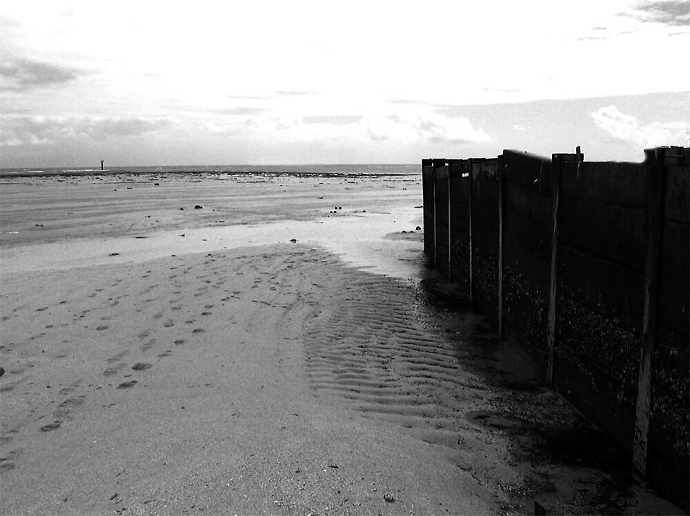 Beach by Meagan11