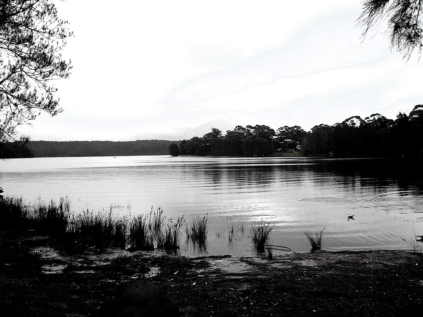 Wallaga Lake by Meagan11