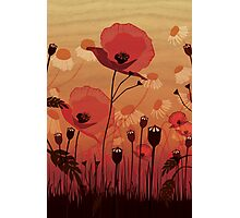 Poppies on woodgrain Photographic Print