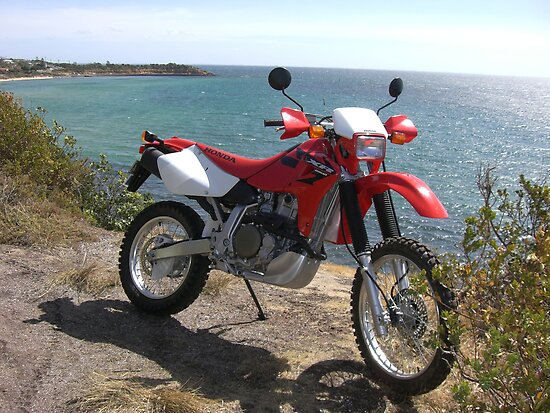 Dirt bike by katsu2007